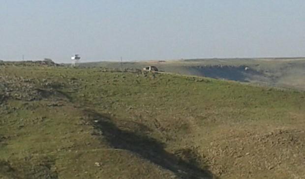Turkish army attacks Rojava protestors at border