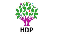 HDP calls on international community to act on developments in Turkey
