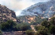 Turkish jets bombard villages near Amedi