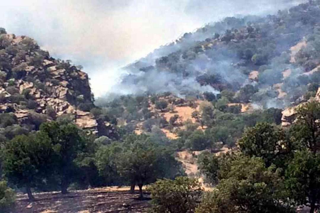 Turkish jets bombard villages near Amedi
