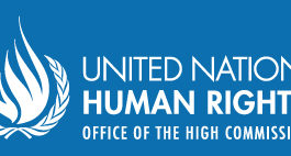 """UN: """"Massive destruction and serious rights violations since July 2015 in southeast Turkey"""""""